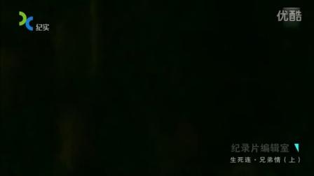 0001.搜狐视频-生死连 兄弟情(上)[高清版]-0008