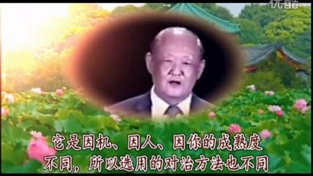 安祥禅-耕云解惑录:《净化自己》会后解惑(视频第三版)
