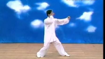 邸国勇--形意拳教学(3)形意八式拳教程.flv