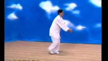 邸国勇--形意拳教学(4)形意杂式捶.flv