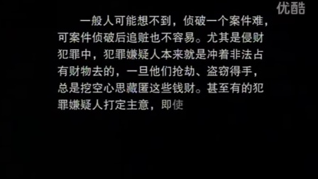 中国大案侦破纪实第2集[高清版]
