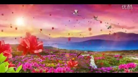 满山映山红仙鹤飞过 中国红歌革命歌曲高清舞台动态