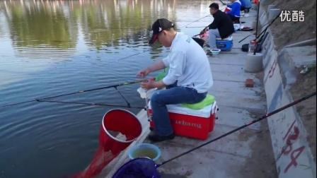 三江红野鸭湖钓鲤鱼