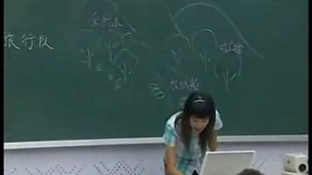 《少年旅行队》课堂实录杨蕾五年级下册北师大版小学语文课堂教学研讨课例