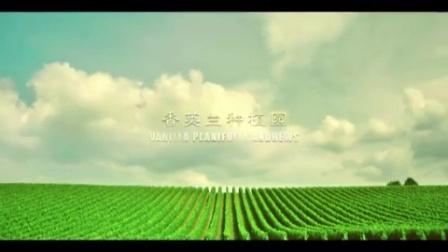 八喜2016网络视频贴片-沿用去年广告