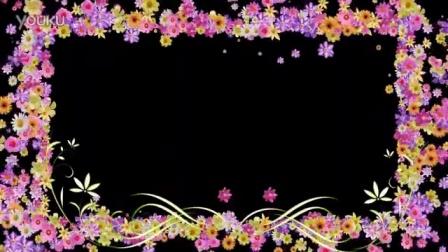 可扣像动态花朵边框视频素材