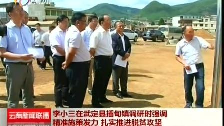 李小三在武定县插甸镇调研 云南新闻联播 20160602