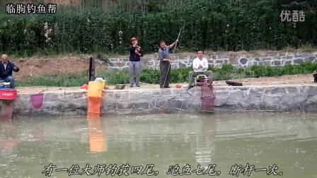 临朐钓鱼帮 2016年6月4日垂钓园里搏大鲤
