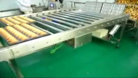 迈思达蛋糕生产线项目