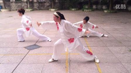武汉市新洲区黄鹤太极队练习游龙拳。    上传 郭爱琴