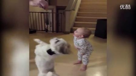 【冯导】婴儿搞笑模仿狗狗转圈圈_高清