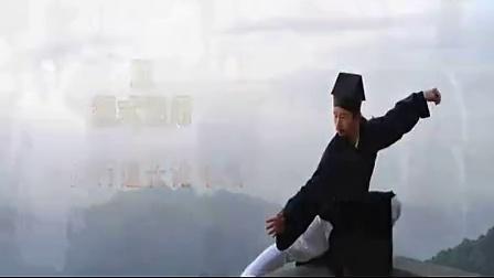 武当太极拳实战技击视频演练_标清