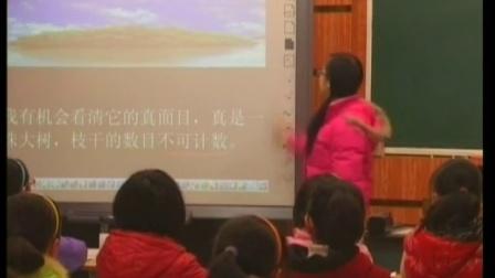 袁晓明工作室诗意语文系列-四年级语文《鸟的天堂》微型课堂实录