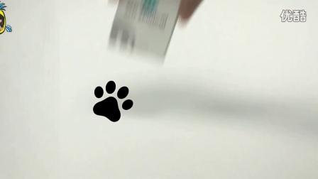 【肥鸡的创业理念-Cutie QeautyBox!】