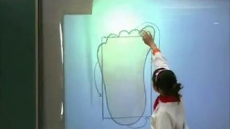 《成长的脚印》示范教学录像五年级上册北师大版小学数学示范课教学录像及教学分析说课视频
