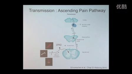 Future of Pain Medicine