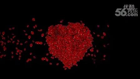 玫瑰花瓣视频素材心形飘落---李小萌