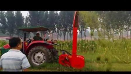 小型玉米青贮收割机 小型青贮饲料收获机