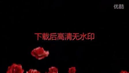 玫瑰花粒子转场特效视频素材带alpha透明通道L00005