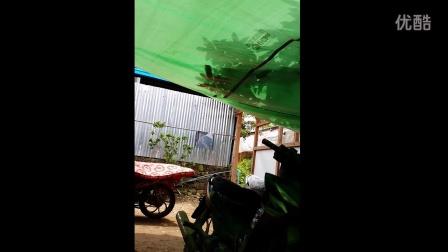 采访团队在缅甸矿区