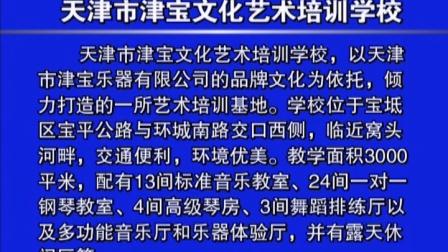 天津市津宝文化艺术培训学校