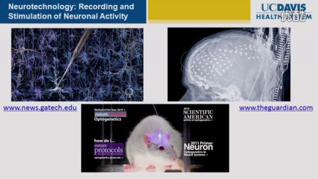 Brain Research- New Discoveries  (1)