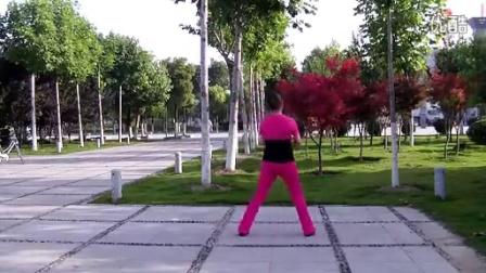 【原创】伊人健身操------大笑江湖 dj串烧【背面演示】_标清