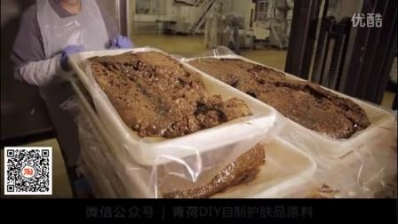 青荷DIY护肤厂家原料提取及加工流程
