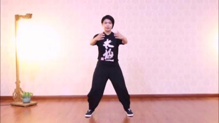 日常养生-体能训练-习武基本功-太极拳入门功法-桩功教学视频