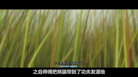2分钟带你看完高分动画 【功夫熊猫1】