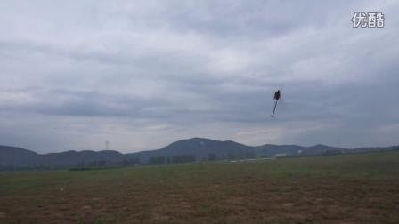 亚拓700N speed(斯贝迪)燃油暴力飞行