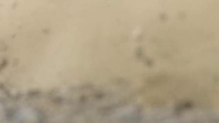 全新奔腾B50_产品视频_成片