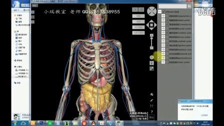 3dbody6.0软件破解版下载3d人体解剖学中文版本