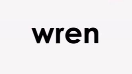 自然拼读Phonics kn wr 字母组合