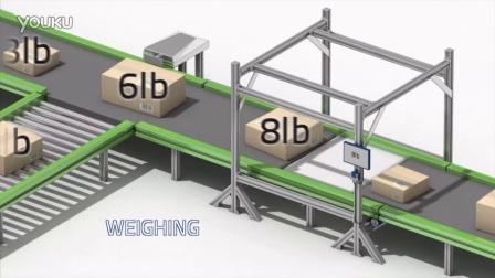 Datalogic得利捷 T&L仓储行业应用:DIMENSION AND SCAN 尺寸测量与扫描