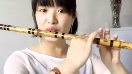 笛子独奏阿里山的姑娘
