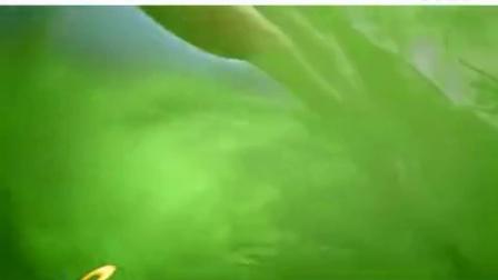 海南海口澄迈碧桂园美浪湾楼盘房产项目位置及别墅洋房广告视频宣传片