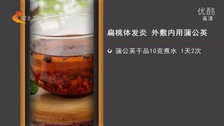蒲公英茶的功效与作用精华版