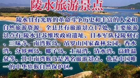 海南陵水黎族自治县房产市场/旅游/气候特点及清水湾楼盘视频介绍