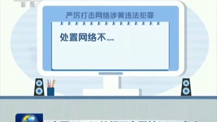 """""""净网2016""""关闭不良网站3600多个 160804"""