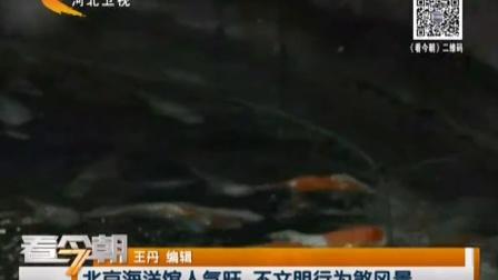 北京海洋馆人气旺 不文明行为煞风景 看今朝 160808