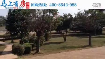 海南澄迈滨江逸品楼盘项目宣传片视频介绍