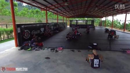 老虎泰拳和MMA 2016