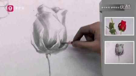 学艺宝美术专业教学视频—基础素描静物写生玫瑰