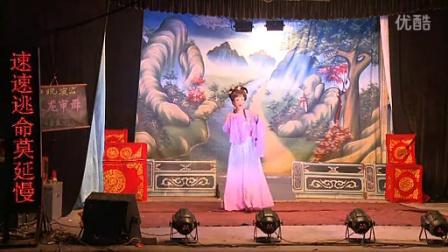 (歌仔戏)漳州艺燕芗剧团《玉龙审母》中集-闽南语-立体声_标清