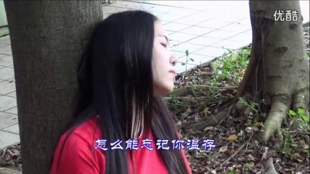 旬邑-阳光人生转载—红尘自有痴情人-dj舞曲