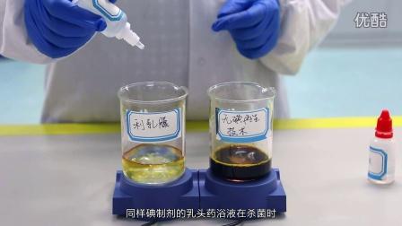 实验室演示奶牛乳头药浴液碘再生技术