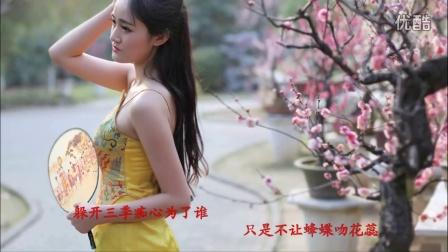 视频歌曲:《谁说梅花没有泪》金珠山老玩童【制作】-超清