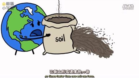 煎蛋小学堂:我们该如何保护土壤