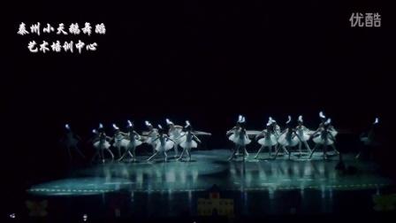 泰州小天鹅舞蹈艺术培训中心原创儿童芭蕾舞《萤火虫》